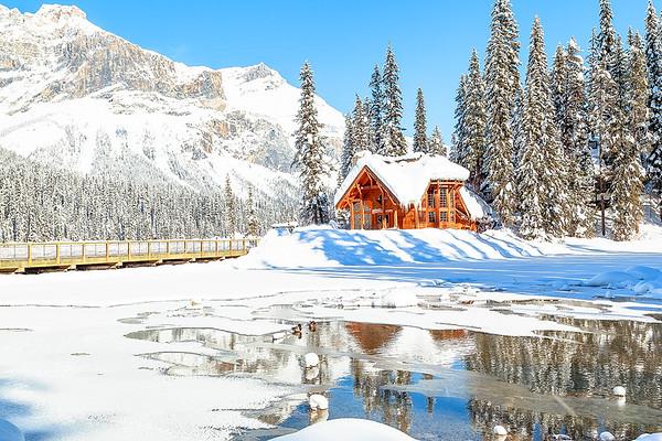 Frozen Teahouse