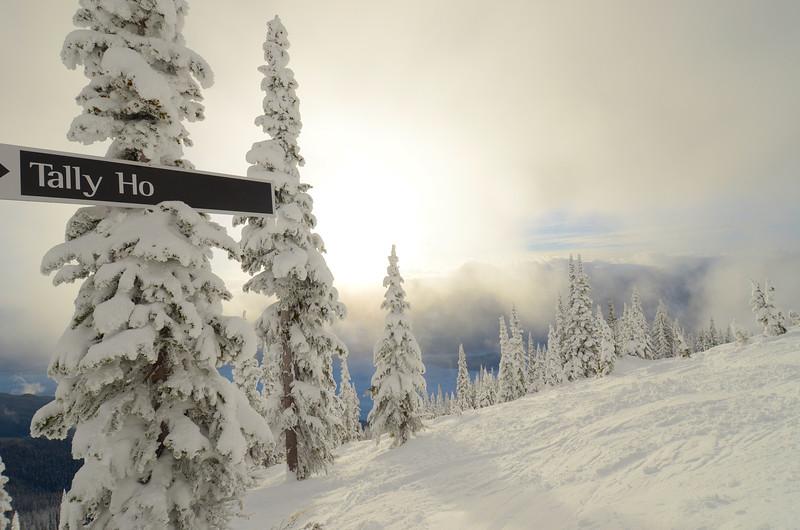 Tally Ho - Revelstoke BC Canada