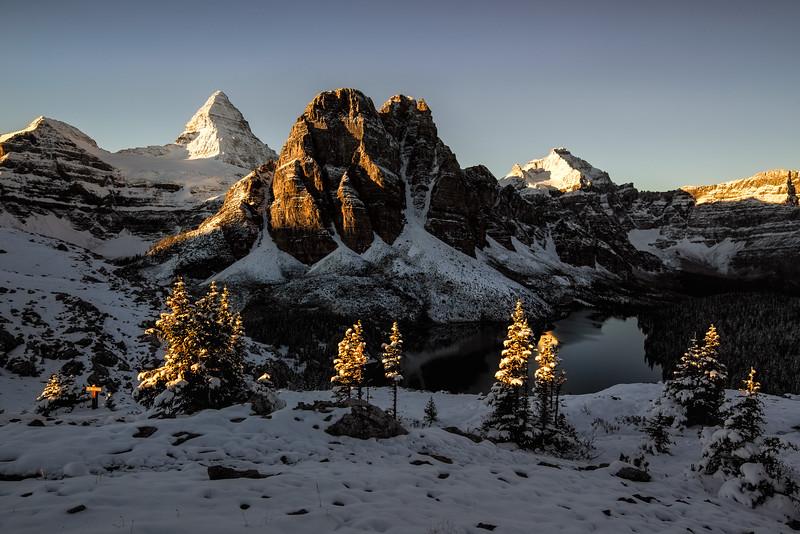 Mount Assiniboine Sunrise