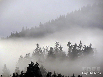 Misty Mountains in Port Moody, Vancouver, Canada