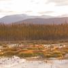 Alaska near the Canada border