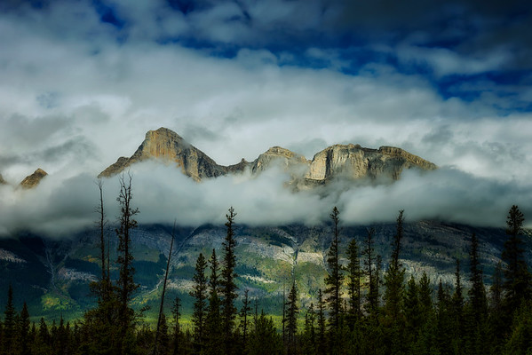By the Icefields Parkway