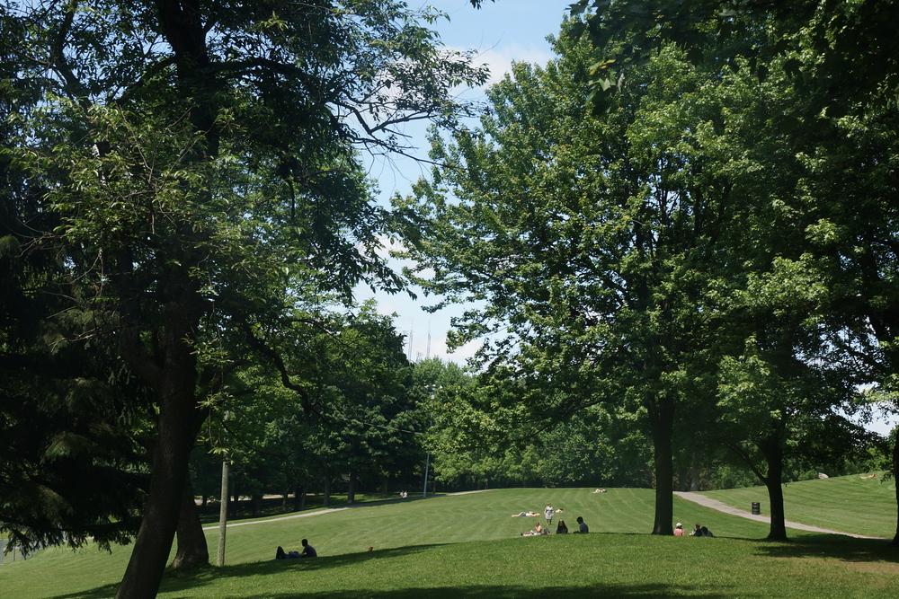 Mount Royal Park - Parc du Mont-Royal