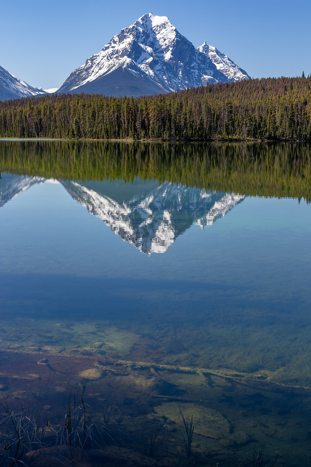 Leech Lake - Jasper National Park