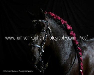 Milady by Tom von Kapherr Photography