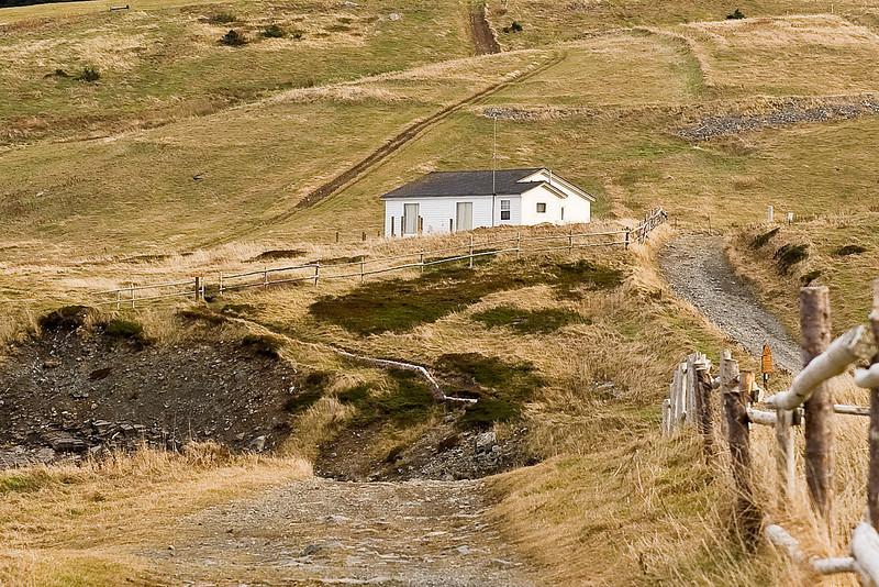 Witless point.Newfoundland