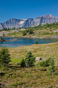 Sunshine Meadows, Banff National Park