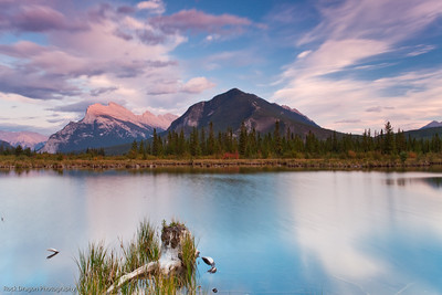 Mount Rundle and Sulphur Mountain from Vermillion Lakes in Banff National Park