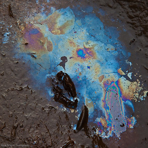 Oil slick in the mud.