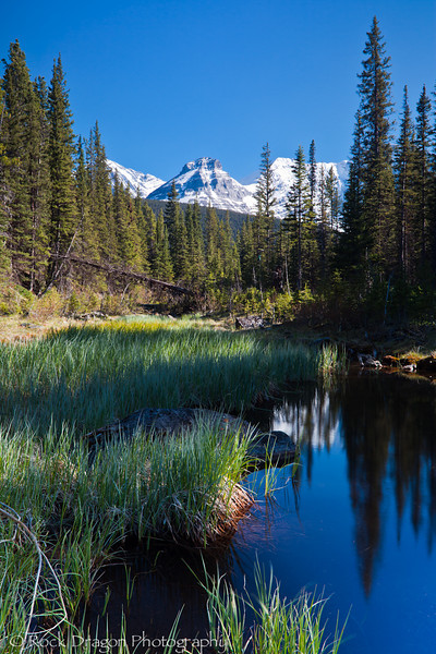 Peter Lougheed Provincial Park.