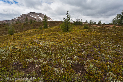 Mount Assiniboine Provincial Park.