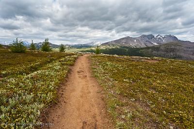 Looking towards Sunshine Meadows from Quartz Ridge in Mount Assiniboine Provincial Park.