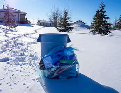 Garbage day on our street by Janet