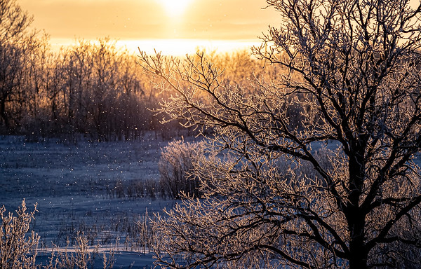 Frosty sunrise by Janet