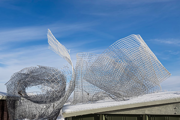 Chicken wire on the roof