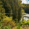 The credit river