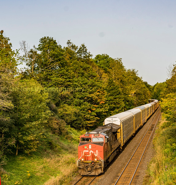 The second train i caught at the top of the escarpment  was this CN cartic train making its way back down to the Detroit area along the Dundas sub with Gevo powered ET44AC  #3037 working the train single handedly.  I would guestimate the train was at least a mile long and as she past me  #3037 was panting heavily  and down to walking pace