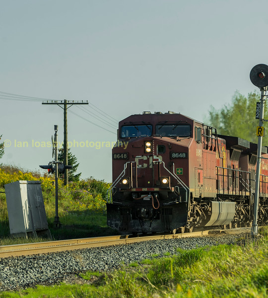 Latter in the afternoon i photed CP train 421 a Montral - Winnepeg pick up freight  at the end of my host's drive, The lead loco is CP  GE  'AC4400CW' #8648 (mactier sub Tottenham)