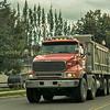 Sterling 8 wheeled  rigid tipper