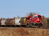 A grain train heads east through Barclay Ontario on its way to Thunder bay with CP 8807 in front , and CP 8502 pulling up the rear.