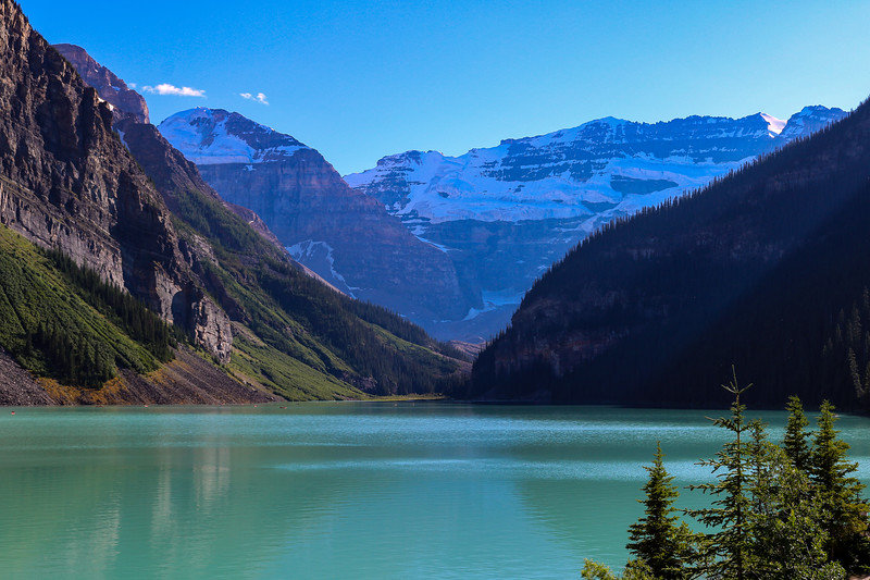 Lake Louise with Pines