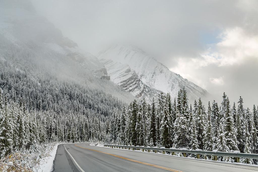 Along the Glacier Parkway, Banff National Park, Alberta, Canada