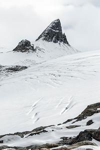 Predator Peak