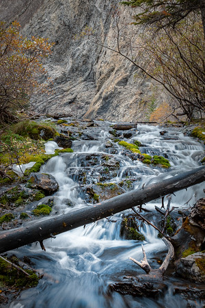 Stream at Grassi Lakes