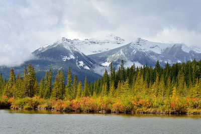 Vermilion Lakes Fall Color