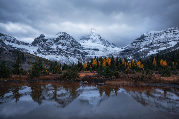 A calm reflection of Mt Assiniboine with fall colors