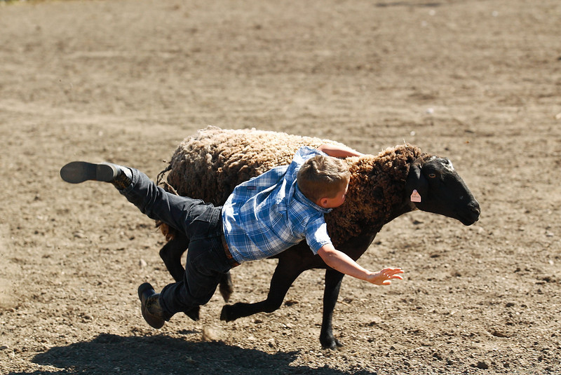 This is why cowboys and cowgirls are tough, they start early!! :)