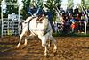 53BG2306MJ_Rodeo_2011_Day2