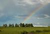 53BG2251MJ_Rodeo_2011_Day2