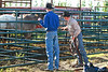53BG1857MJ_Rodeo_2011_Day1