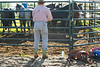 53BG1861MJ_Rodeo_2011_Day1