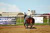 53BG1840MJ_Rodeo_2011_Day1