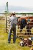 53BG0844Pilot Butte Rodeo 2011