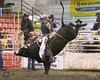 Austin Ireland - Novice Bull Riding