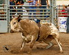 LI4_4419_Moosomin_BullFuturity2