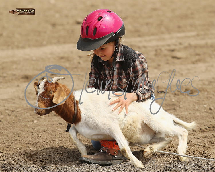 LI4_6826_Moosomin_KidsRodeo2018_final