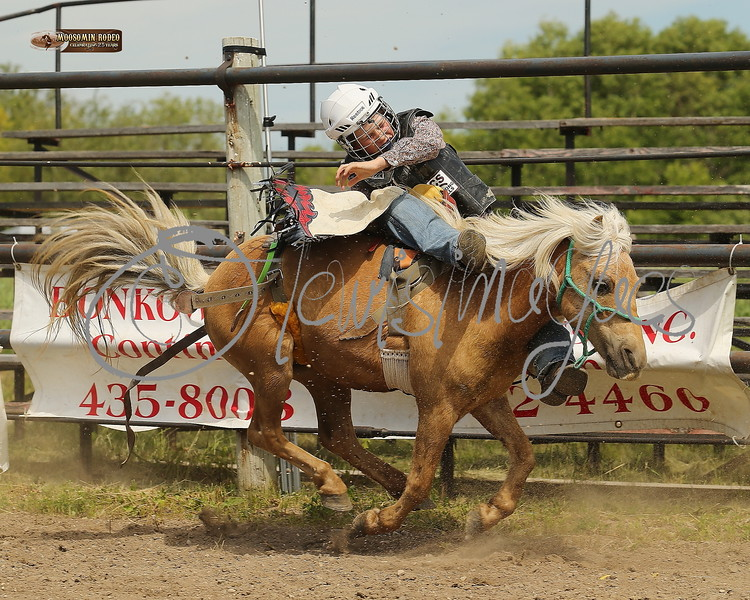 LI4_6879_Moosomin_KidsRodeo2018_final