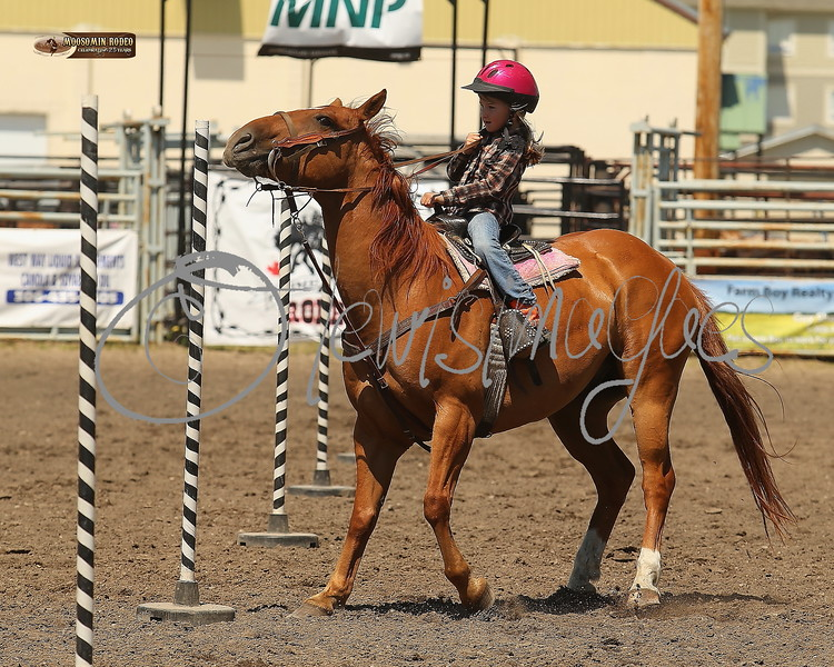 LI4_6737_Moosomin_KidsRodeo2018_final