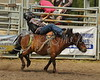 LI4_6868_Moosomin_KidsRodeo2018_final