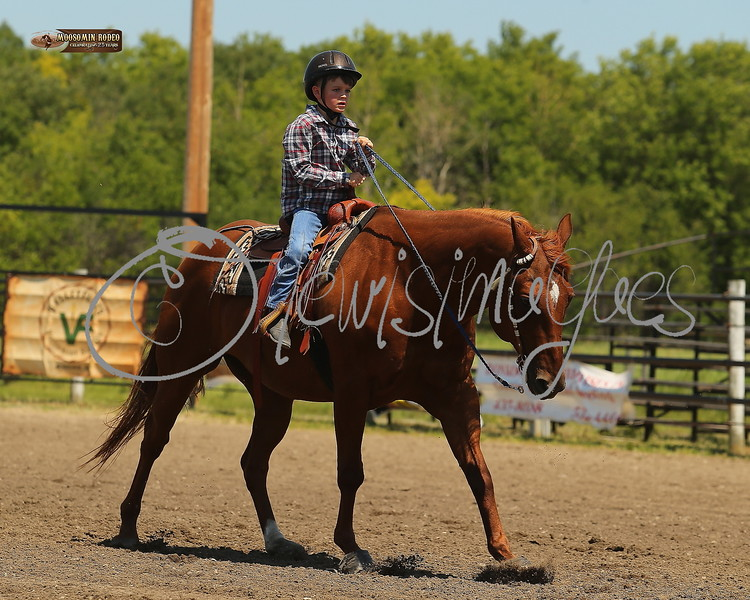 LI4_6599_Moosomin_KidsRodeo2018_final