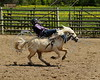 LI4_3961_Moosomin_Kids Rodeo_1