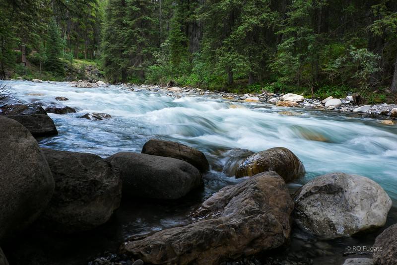 Creek running through Johnston Canyon.