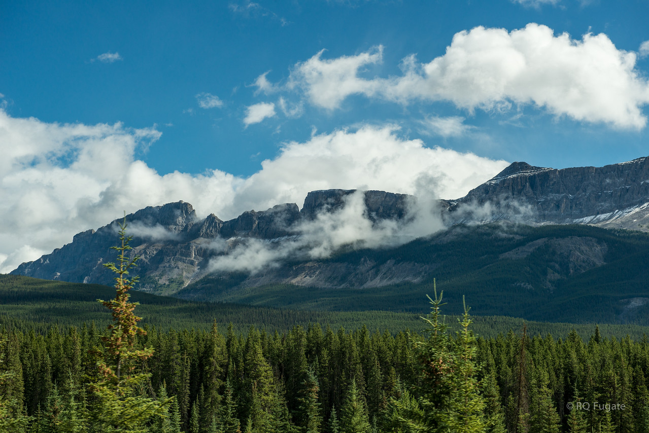 Just south of Lake Louise on the Trans-Canada Highway.