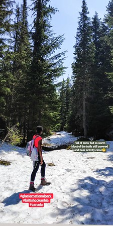 Nooo! We were not able to follow any long hiking trail, too much snow (Glacier National Park)