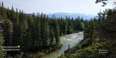 Maligne River (Jasper National Park)