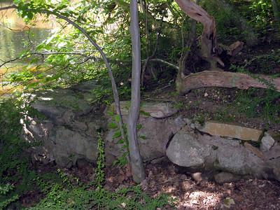 Beaver Brook aqueduct and feeder (5-31-11).
